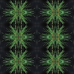 DSC_0573, espejo