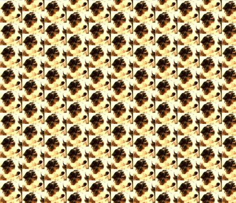 Our Dog Syd fabric by kimruss@thatcatart on Spoonflower - custom fabric