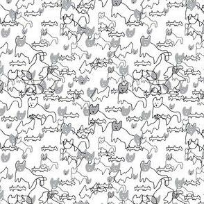 Cat Allover