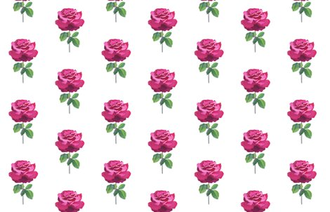 Rrrrrrrrrre_2012_rose_ess_ii_no_title_sig_wmk_-_wh_bkgr_shop_preview