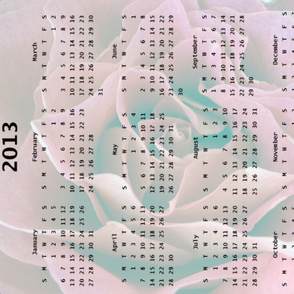 2013 Calendar - Rose  Lavender and Teal