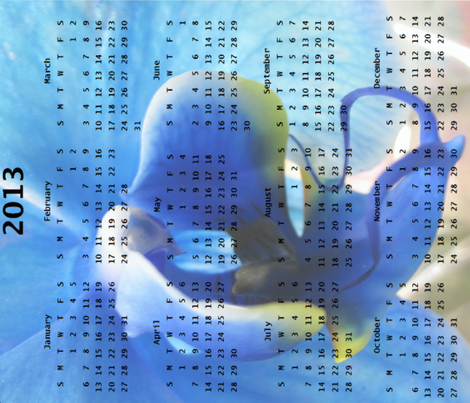 2013 Calendar - Flowers - Blue Orchid fabric by dovetail_designs on Spoonflower - custom fabric