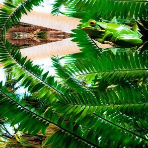 Rainforest-Digital Print