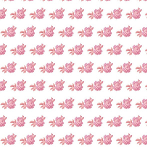 Pink Fushia Rose