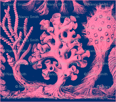 Sea Life pink