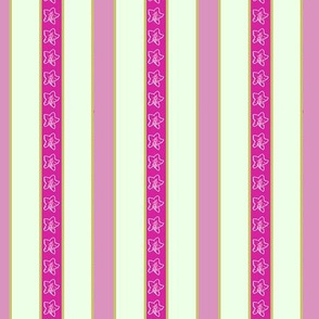 Campanula stripe_