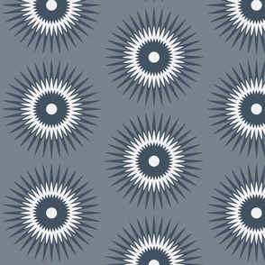 starburst in grey