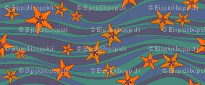 Starfish stripe