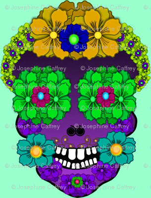 Flower Skull with blue background