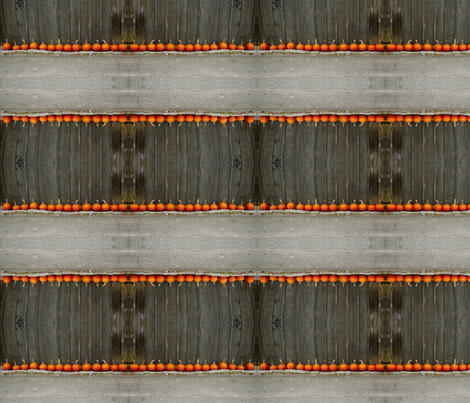 Pumpkin Stripe fabric by adagio on Spoonflower - custom fabric