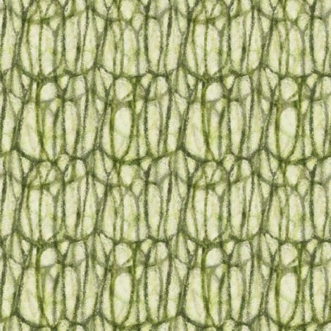 Cell walls fabric by wren_leyland on Spoonflower - custom fabric