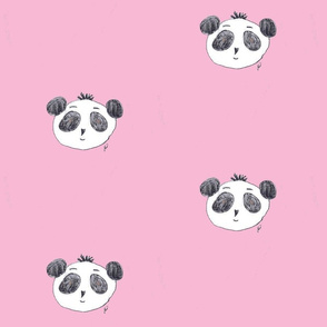 preston the panda on pink