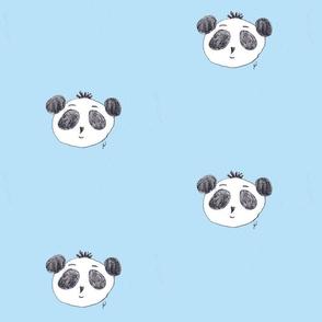 preston the panda on sky-blue