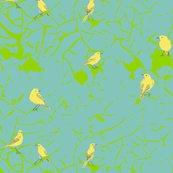 Wagtail_design_2_shop_thumb