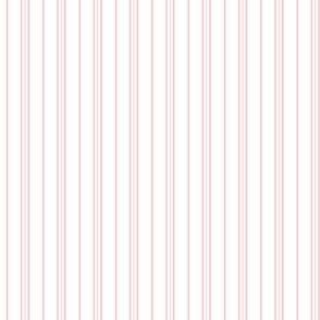 Regency Stripe White and Rose