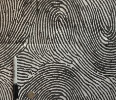 Rrfingerprint_comment_226640_thumb