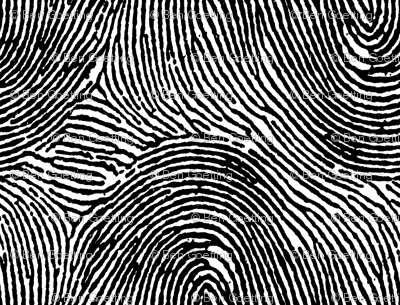 Fingerprint stripes black & white
