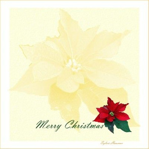 Christmas Pointsettia Quilt Block
