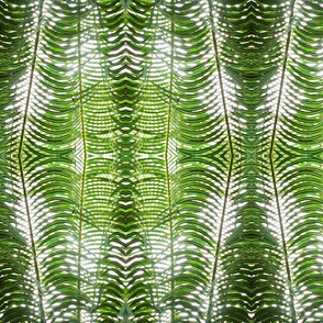 green_palm_leaves