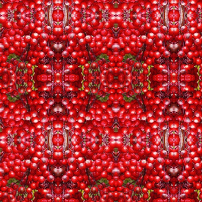 Red Berries Red