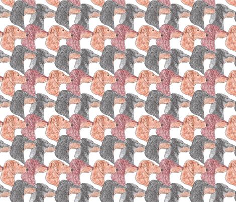 Dachshund faces  fabric by rusticcorgi on Spoonflower - custom fabric