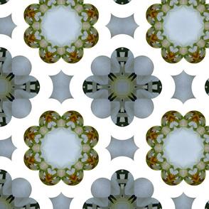 Orchid Kaleidoscope Pattern