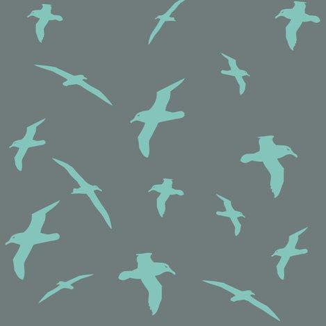 Ralbatross_flight_teal_shop_preview