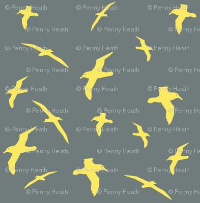 Albatross Flight Yellow