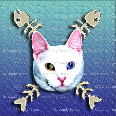 cat with fish bones