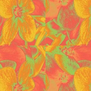 Lucile's hydrangeas - yellow & orange #1