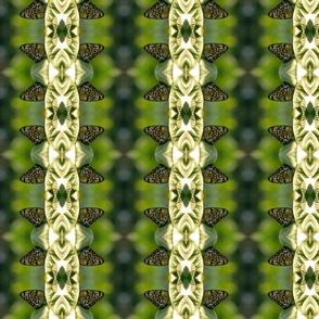 Monarch Greenery