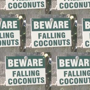Aloha  coconuts