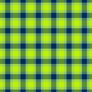 plaid blu green