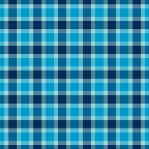 plaid blu
