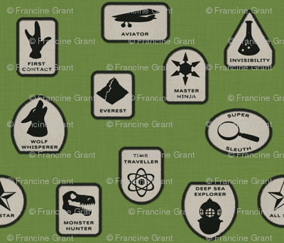 Heroic Merit Badges