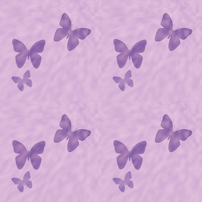 Butterflies and Clouds in lavender