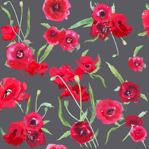 poppies on dark grey