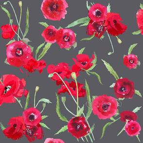 poppies on dark grey