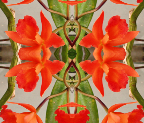Orange Orchids for an Exotic Lady fabric by susaninparis on Spoonflower - custom fabric