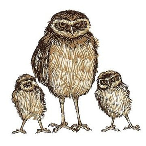 Owl Family Decal