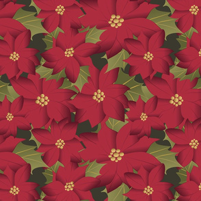 Poinsettia on green