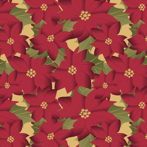 Poinsettia on yellow