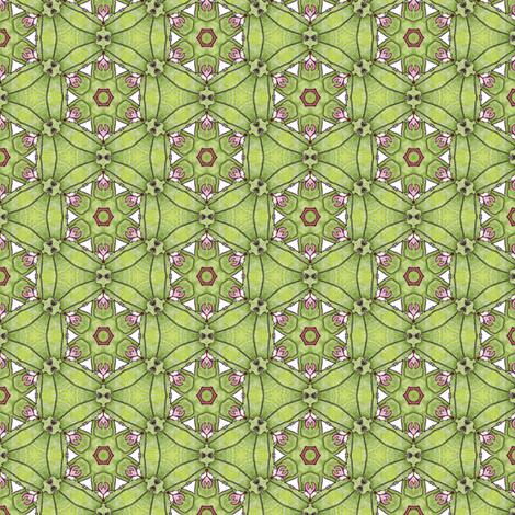 Rosalie's Garden Wheel fabric by siya on Spoonflower - custom fabric