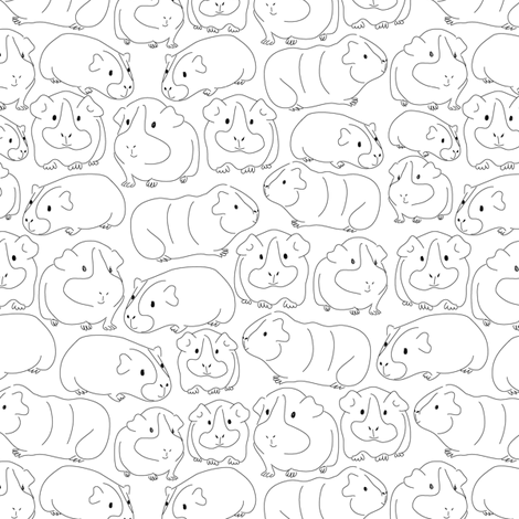 Sketchy Guinea Pigs fabric by ebygomm on Spoonflower - custom fabric