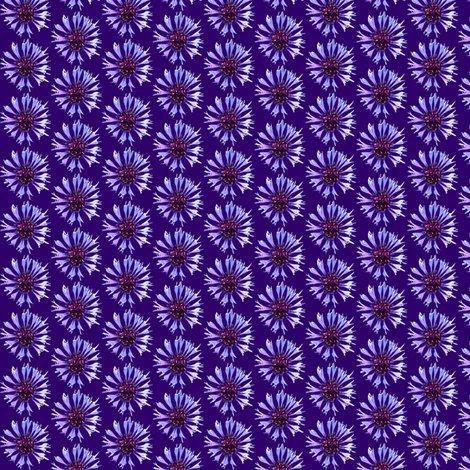 Rcornflower_xs_shop_preview