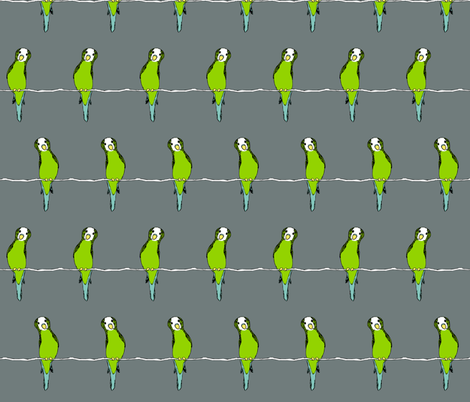 Parakeets on Grey fabric by pond_ripple on Spoonflower - custom fabric
