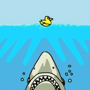 shark versus duck
