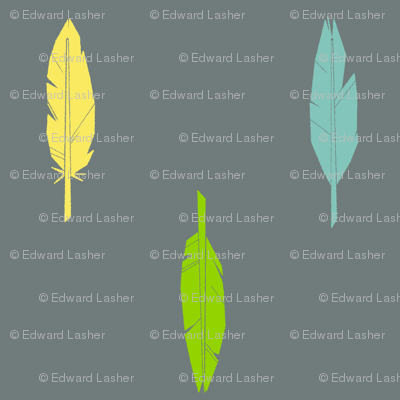 3_feathers-2