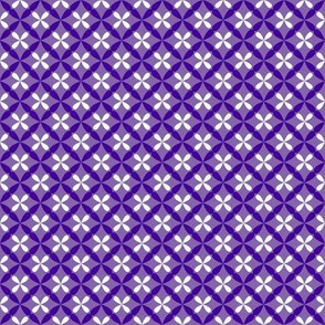 Nested Lattice Purple B