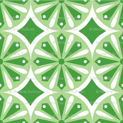 Sliced Citrus Green
